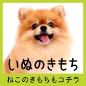 ヒトと愛犬の生活情報誌「いぬのきもち」