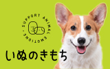 ヒトと愛犬の生活情報誌「いぬのきもち」