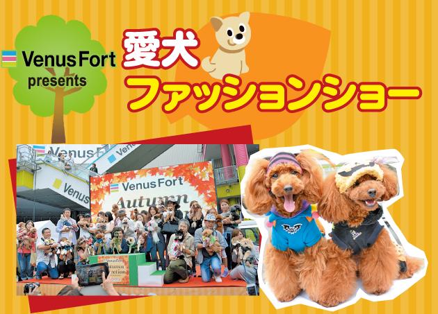 VenusFort presents 愛犬ファッションショー