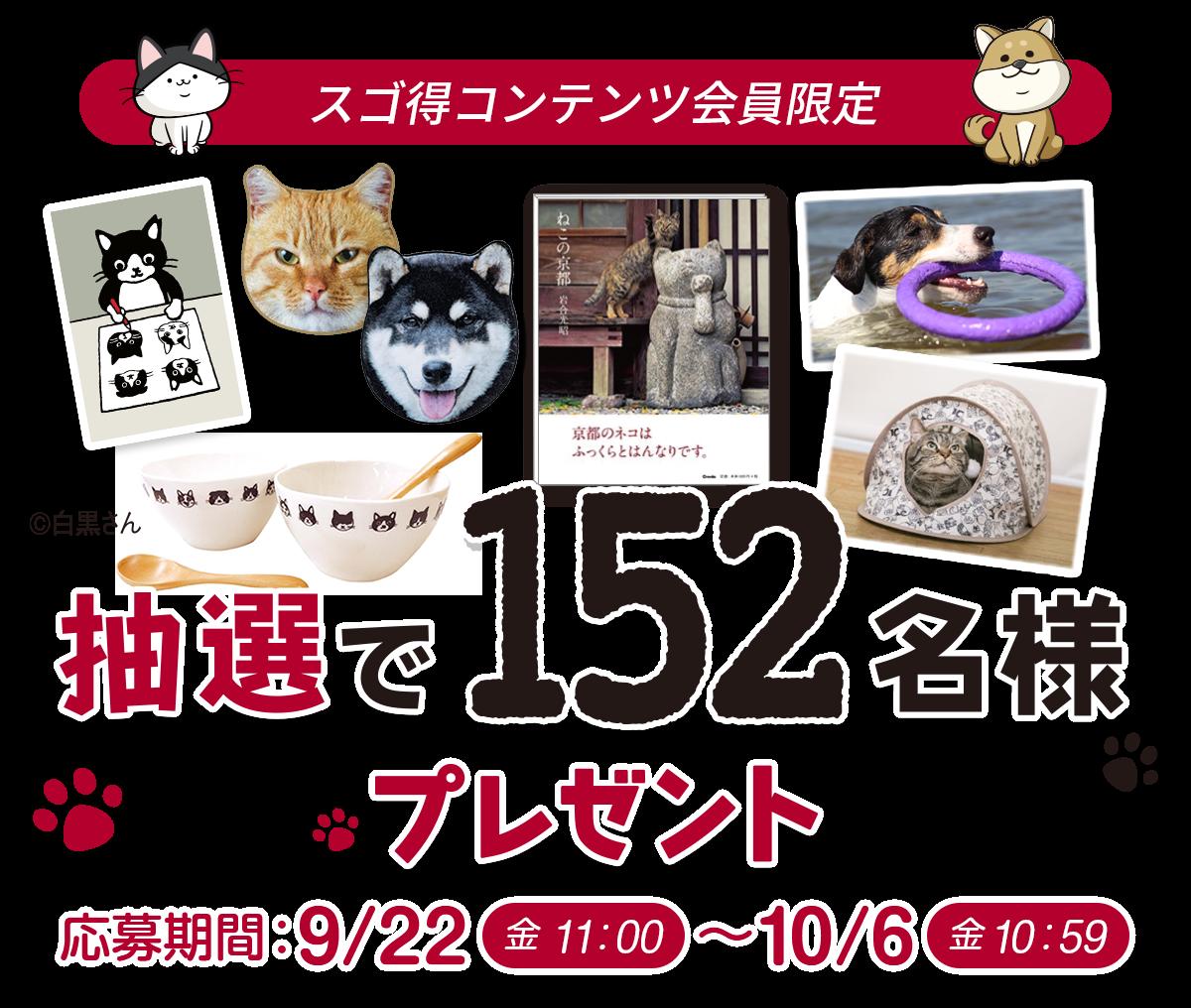 応募期間:9/22(金)~10/6(金)