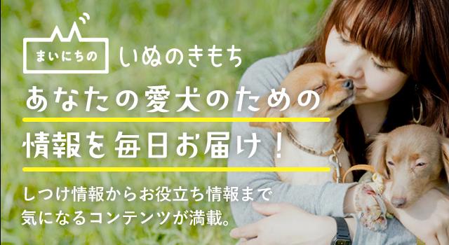 あなたの愛犬のための情報を毎日お届け